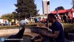 Enlace a Podolski jugando a fútbol con una foca, que tiene más calidad que toda la plantilla del Arsenal