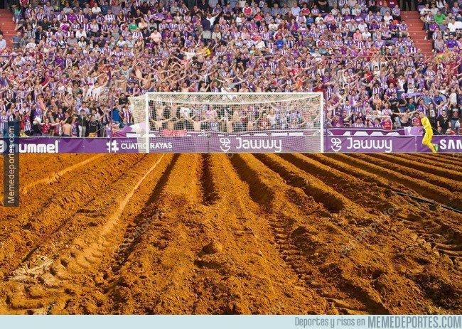 1048596 - ¡PÍNCHAME! Nos llegan nuevas imágenes del estado del campo del Valladolid.