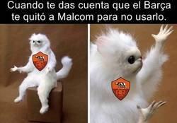 Enlace a ¿Qué debe estar pensando Malcom?
