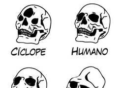 Enlace a La lógica