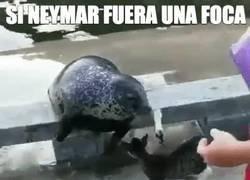 Enlace a Si Neymar fuera una foca