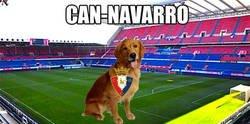 Enlace a Definición gráfica de Can-Navaro
