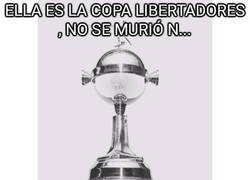 Enlace a D.E.P. Copa Libertadores