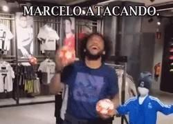 Enlace a Las facetas de Marcelo