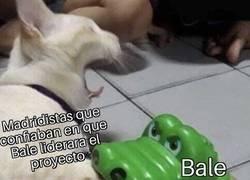 Enlace a Los madridistas están dolidos con Bale