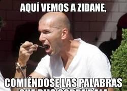 Enlace a Zidane se come sus palabras sobre Bale