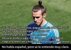 Enlace a Lo de Bale esta alcanzando unas cuotas...