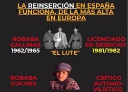 Enlace a La reinserción en España, lleva 40 años de buen funcionamiento.