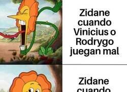 Enlace a El doble rasero de la flor de Zidane