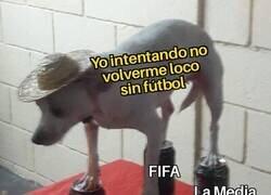 Enlace a La cuarentena del futbolero