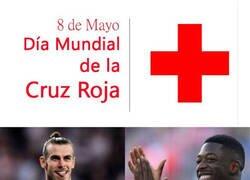 Enlace a Feliz día de la Cruz Roja