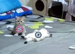 Enlace a El Bayern viendo al Barça be like...