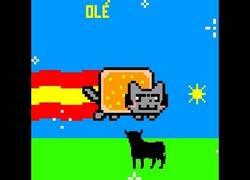 Enlace a Spanish Nyan Cat ¡olé!