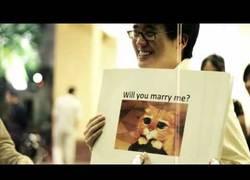 Enlace a Proposición de matrimonio con memes