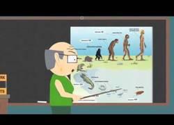 Enlace a Otra forma de ver la teoría de la evolución