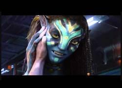 Enlace a Avatar en 5 segundos
