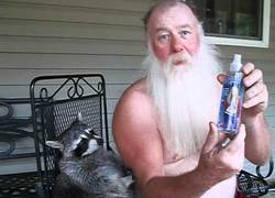 Enlace a Hannah Montana, repelente para mapaches