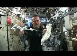 Enlace a Esto es lo que pasa cuando aprietas una toalla húmeda en el espacio