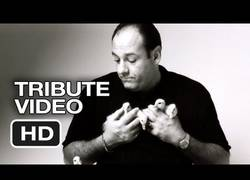 Enlace a Video homenaje a James Gandolfini, gracias Tony, eterno Soprano