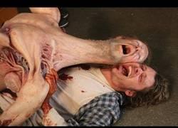 Enlace a Así se hicieron las criaturas que aparecieron en la película The Thing, escalofriante y muy curioso