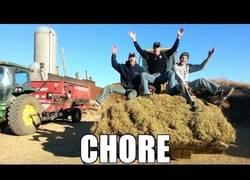 Enlace a Estos tres hermanos granjeros se han currado la versión agraria de Roar de Katy Perry