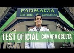 Enlace a Acaban de legalizar la marihuana en Uruguay, pero antes de eso hicieron esta cámara oculta