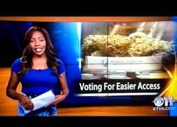 Enlace a Periodista dimite en directo exigiendo la legalización de la marihuana [Inglés]