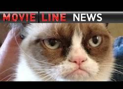Enlace a ¡Ya falta menos para la peli navideña de Grumpy Cat!