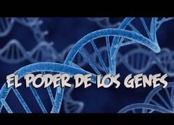 Enlace a Estas fotografías muestan el poder de los genes