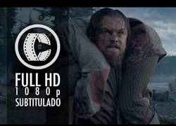 Enlace a The Revenant lo nuevo de Leonardo DiCaprio