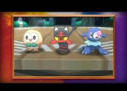 Enlace a ¡Desvelados los Pokémon iniciales de Pokémon Sol y Pokémon Luna!
