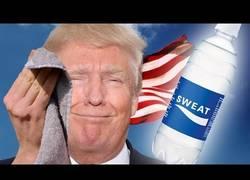 Enlace a Haciendo un unboxing del sudor de Donald Trump
