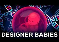 Enlace a La ingeniería genética cambiará todo