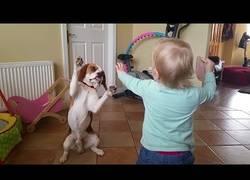 Enlace a Por esto los perros son parte de nuestra familia