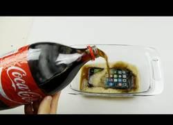 Enlace a ¿Sobrevivirá un iPhone 7 12 horas sumergido en Coca cola?