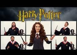 Enlace a Cantando a capella el tema de Harry Potter que te teletransportará a Hogwarts