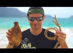 Enlace a Creando cuerda a partir de muchos cocos