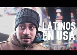 Enlace a Así se sienten los latinos en EEUU tras la victoria de Trump