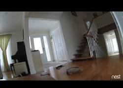 Enlace a El Roomba que cometió un suicidio limpiando la casa. RIP