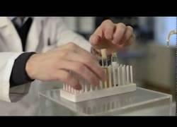 Enlace a De esta forma se hacen los medicamentos homeopáticos