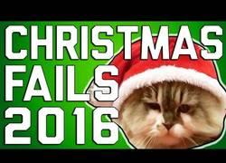 Enlace a ¡Los mejores fails navideños en 2016!