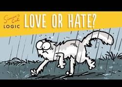 Enlace a ¿De verdad que los gatos odian el agua?
