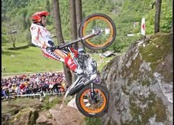 Enlace a A Toni Bou no se le resiste nada por su camino con la moto de trial
