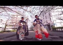 Enlace a El magnífico sonido de los shamisen