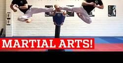 Enlace a Las artes marciales en todo su esplendor