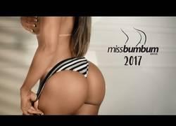Enlace a Ellas son las candidatas a llevarse el Miss BumBum Brasil 2017 con sus increíbles curvas