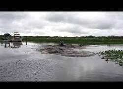Enlace a ¿Te atreverías a bañarte en este río?