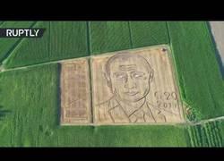 Enlace a Este granjero italiano dibujó a Putin en su campo con su tractor