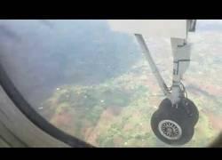 Enlace a Esta avioneta parte por la mitad a un ciervo con las ruedas en pleno aterrizaje