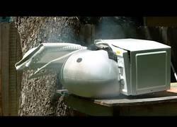 Enlace a Colocan un airbag dentro de un microondas y lo hacen explotar